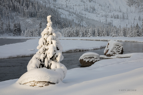 YSWR01916 - Yellowstone Winter